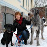 Dra. Randi I. Krontveit com cães estudados