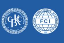 Pedigree CBKC e FCI